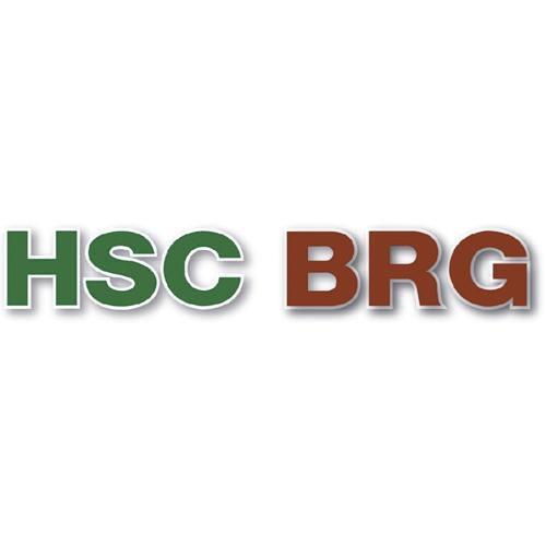 MARCA REPUESTOS VEHICULO HSC BRG PARA REPARACION MOTOR Y SUS PARTES, EMBRAGUE Y TRANSMISION