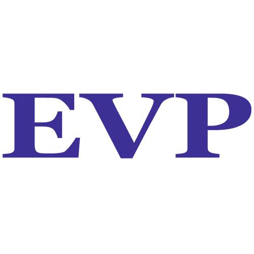 MARCA REPUESTOS VEHICULO EVP EVERSPARK PARA REPARACION PARTES ELECTRICAS